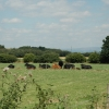 View across farm land near Gorse Covert, Warrington