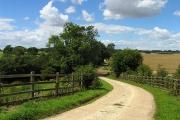 Oarebourough Lane and Farmland: Oare