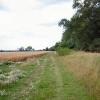 Black Ditches, near Cavenham