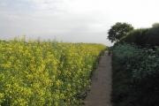 Path between Calverton and Oxton