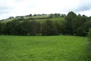 Barton Hills