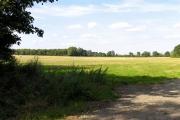 Farmland near Chievely