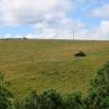 Haymaking, Upper Drumbuie