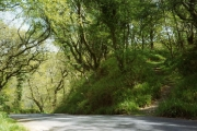 Martinhoe: the coast road above Woody Bay
