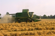 Harvesting at Brightwalton Holt