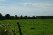 Hammond's End & Wheeler's Farm
