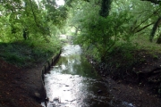 Ravensbourne River BR2