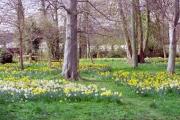 Hampden Park, near Eastbourne