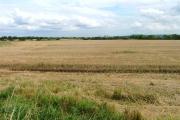 Stubble Fields, Durham Lane