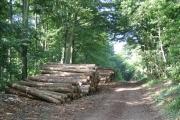 Logs, Parks Farm