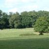 Attingham Estate