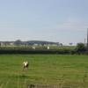 Horse paddocks, Edgehead.