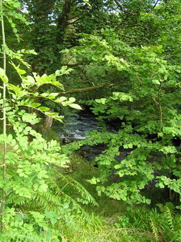 Mhungosdaill River