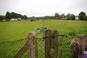 Farmland in Elmbridge district