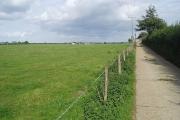 White Barn Farm lane