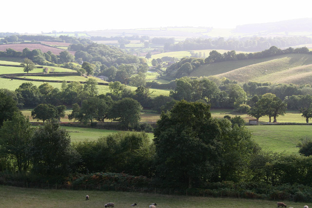 Crowcombe: Doniford valley