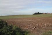 View West over Bilsthorpe Moor