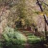 Path around Sutton Walls