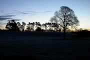 Dawn at the Whitegate Way