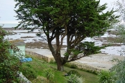 Beach Hut Garden