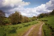 Cutcombe: near Luckwell Bridge
