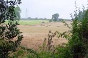 Farmland at Smalley