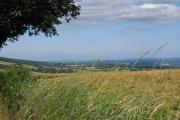 Mortimer Trail