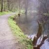 River Wye, Millers Dale, below Litton Mill