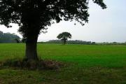 Farmland near Berwick Station
