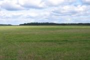 Farmland NW of Barton, Cambs