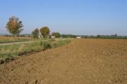 Farmland S of Wrestlingworth, Beds