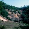 Mine spoil dumps, near Gunnislake