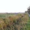 Fields north of Ardington Wick