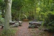 Mount Wood, Chenies