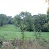 Meadows near Cordwell