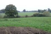 Farmland near Salfords
