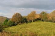 Field, Sallachy.