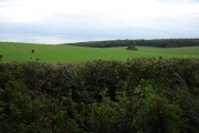 View from lane towards Gravelpit Wood over farmland