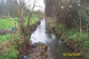 Ingrebourne River, Harold Park
