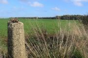 Turmar Farm