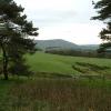Bleasdale Farmland