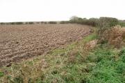 Farmland West of Hilston