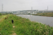 River Weaver near Runcorn