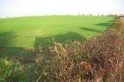 Farmland North of Hornsea