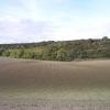 Plough marks on Rowborough Down