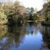 Brookfield Pond
