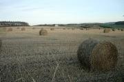 Farmland west of 'The' Gauldry