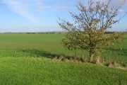 Farmland at TA1669051363