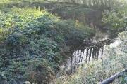 River Roding at Langford Bridge, Essex