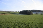 Farmland and woods behind Bridekirk.
